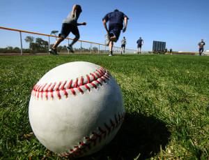 baseball training programs
